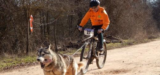 Bikejöring con Grey Wind. Fotografía de Noemí Calleja